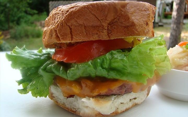 Deer Burgers Recipe Recipezazz Com